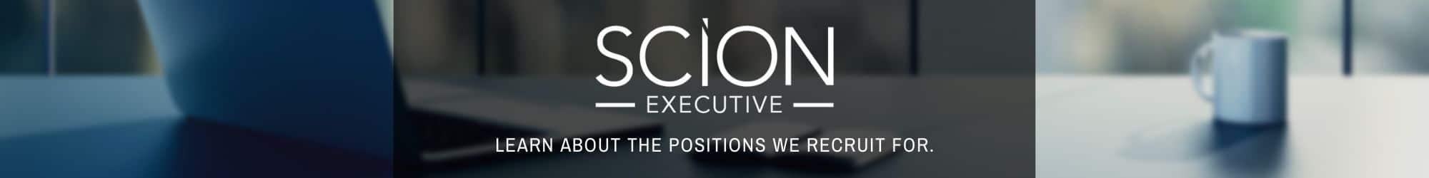 Scion Executive Search Process